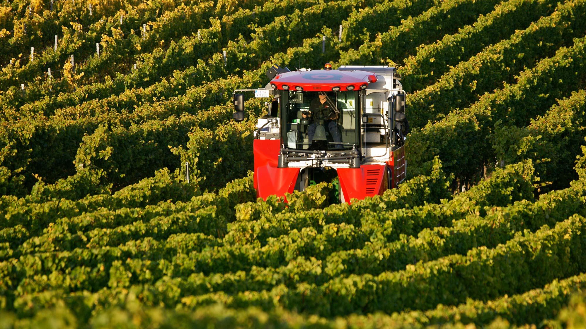 Ero Weingerätebau